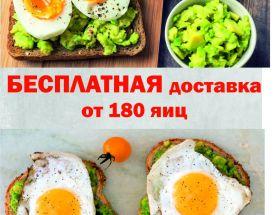 180-zbw